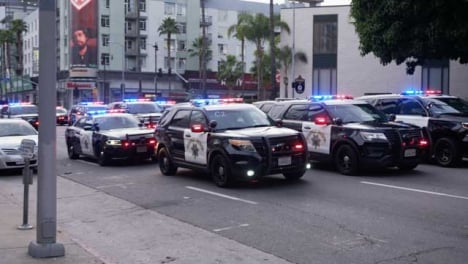 Hollywood-Rows-of-Static-Police-Cars-Blocking-Road