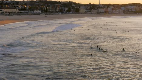 Surfers-in-the-Water-on-Bondi-Beach-at-Dawn-
