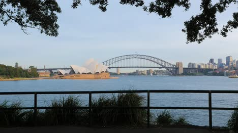 Sydney-Bridge-and-Opera-House-with-trees-and-fence