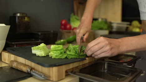Close-Up-of-Female-Hands-Cutting-Lettuce-