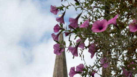 Rack-Focus-Shot-from-Wall-Mounted-Flowers-to-Church-Spire-In-Oxford-England