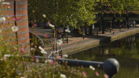 Pull-Focus-of-Decorative-Flowers-On-a-Canal-Bridge-