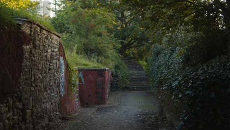 Tracking-Shot-Through-a-Secluded-Path-In-Bristol-