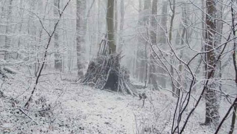 Tracking-Shot-Approaching-Man-Made-Shelter-In-Snowy-Woods