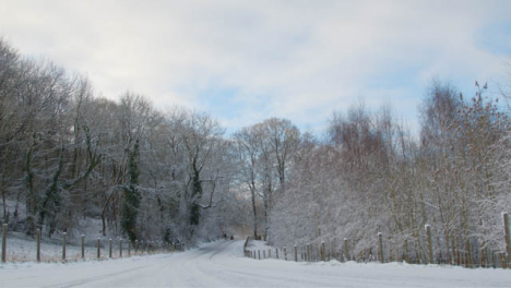 Tilting-Shot-Looking-Down-a-Road-Leading-into-Snow-Covered-Woodland-Area