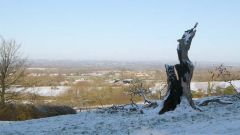 Panning-Shot-of-Dead-Tree-Surrounded-by-Snow-Covered-Countryside