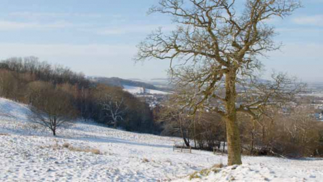 Tracking-Shot-Approaching-Tree-In-Snow-Covered-Field-Against-Cotswold-Landscape