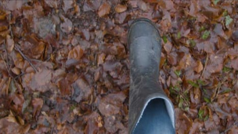 POV-Shot-Looking-Down-at-Feet-Walking-On-Forest-Floor