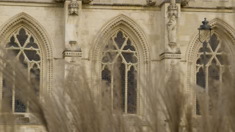Pull-Focus-Shot-Through-Grass-Looking-at-Gloucester-Cathedral