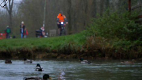 Defocused-Shot-of-Pedestrians-Passing-Over-Bridge-Above-River-with-Ducks
