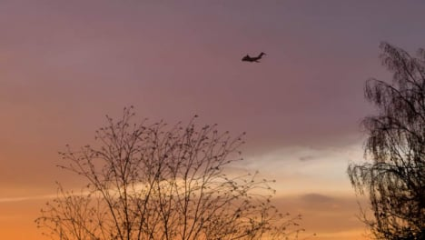 Wide-Shot-of-Tree-Branches-Swaying-In-Wind-as-Plane-Flies-Past-at-Sunset