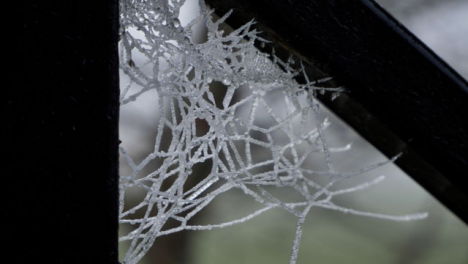 Extreme-Close-Up-of-Frosted-Over-Spider-Web-On-Cold-Morning