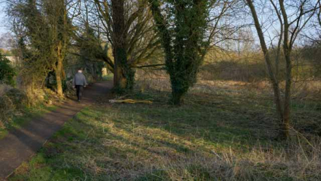 Wide-Shot-of-Senior-Person-Walking-Along-Woodland-Footpath