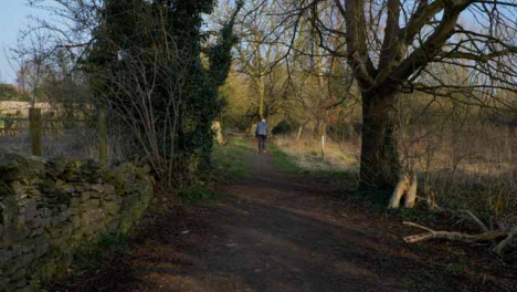 Tracking-Shot-Following-Senior-Person-Walking-Along-a-Woodland-Footpath