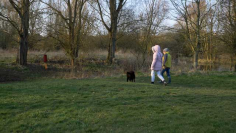 Tracking-Shot-Following-Dog-Walkers-In-Woodland-Area