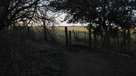 Tracking-Shot-Approaching-Woodland-Kissing-Gate