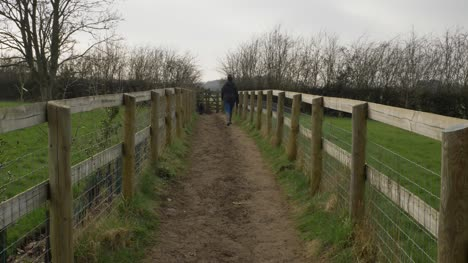 Wide-Shot-of-Dog-Walker-Walking-Along-Rural-Footpath-