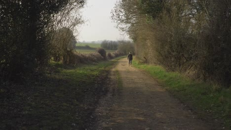 Wide-Shot-of-Person-Approaching-Camera-Along-Rural-Footpath