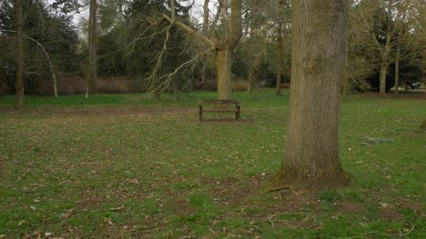 Tracking-Shot-Approaching-Empty-Bench-In-Park-