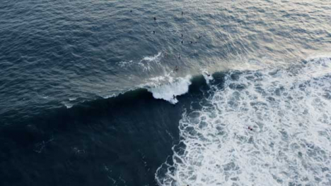 Drone-Shot-Following-Surfer-Attempting-to-Ride-Wave