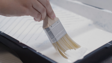 Close-Up-Shot-of-Person-Filling-Paint-Brush-with-White-Paint-from-Tray