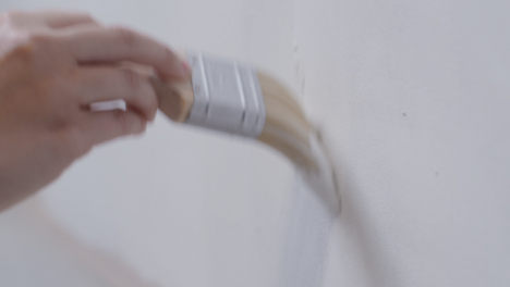 Close-Up-Shot-of-Person-Filling-Paint-Brush-with-White-Paint-from-Tray-and-Painting-Wall