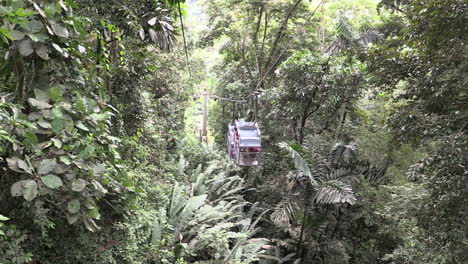 Costa-Rica-rainforest-looking-down-at-cable-cars