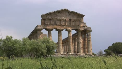 Italy-Paestum-Temple-of-Athena-with-blowing-grass