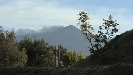 Sicily-trees-with-Etna-smoking