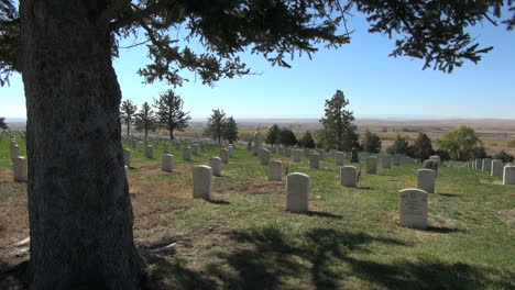 Little-Bighorn-Battlefield-National-Monument-cemetery-and-pine-tree