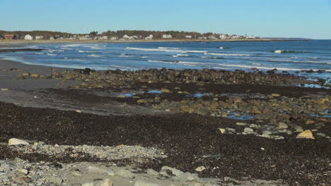 Rye-Harbor-State-Beach-New-Hampshire-with-sea-weed