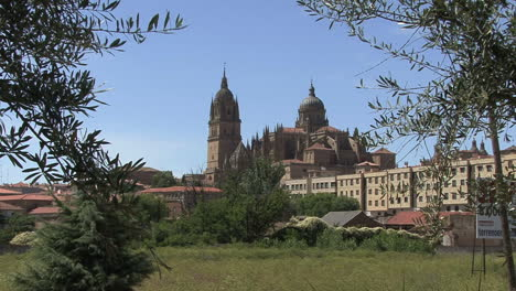 Salamanca-Spain-cathedral-in-distance