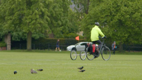 Long-Shot-of-Cyclist-In-Park