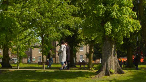 Tracking-Shot-Following-Pedestrians-and-Cyclists-Under-Trees-In-Public-Park-