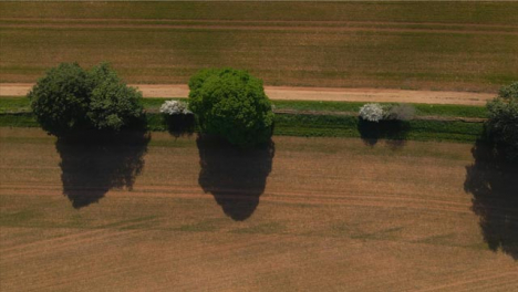 Drone-Shot-Looking-Down-On-Dirt-Road-In-Agricultural-Field