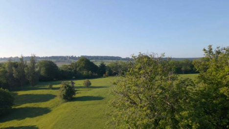 Drone-Shot-Flying-Past-Tree-Over-Field-