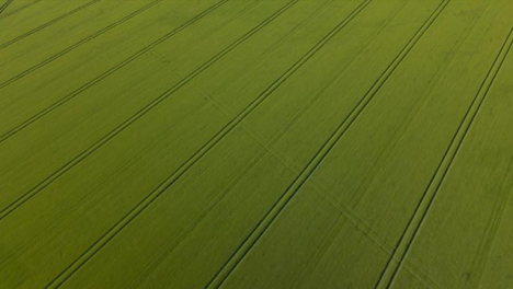 Drone-Shot-Passing-Over-Countryside-Agricultural-Field-