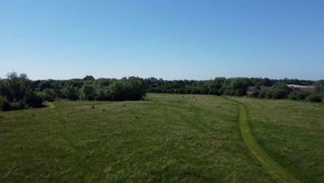 Drone-Shot-Flying-Low-Over-and-Then-Rising-Up-Over-a-Tall-Grass-Field-