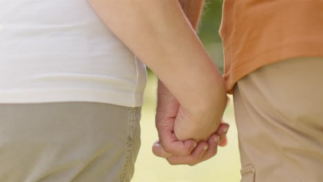 Close-Up-Shot-of-Senior-Couples-Locked-Hands-as-They-Walk
