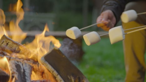 Close-Up-Shot-of-Marshmallows-On-Sticks-by-Campfire-01