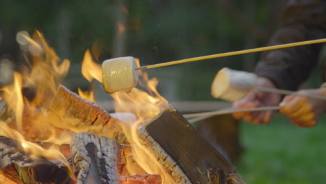 Close-Up-Shot-of-Marshmallows-On-Sticks-by-Campfire-02