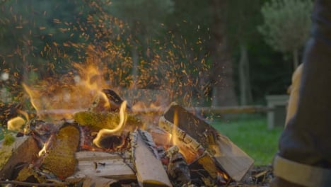 Close-Up-Shot-of-Wood-Being-Thrown-Onto-Burning-Campfire-