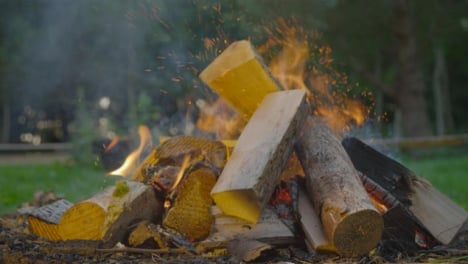Close-Up-Shot-of-Wood-Being-Thrown-Onto-a-Burning-Campfire-