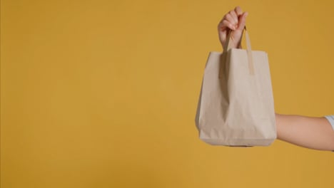 Medium-Shot-of-Young-Adult-Womans-Hand-Holding-Up-Brown-Paper-Bag-with-Copy-Space