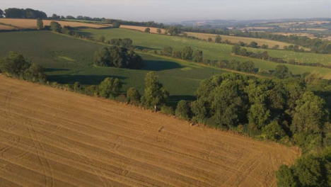 Drone-Shot-Flying-Away-from-Rural-Fields