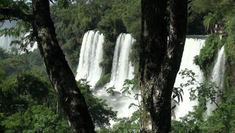 Iguazu-Falls-Argentina-and-tree-trunks