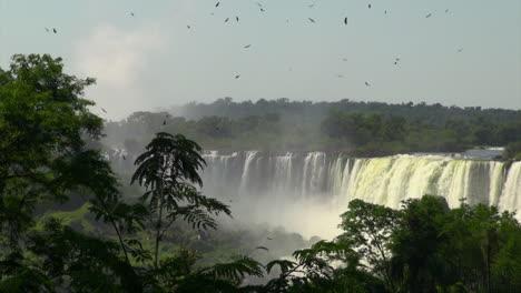 Iguazu-Falls-Argentina-birds-fly-above-falls