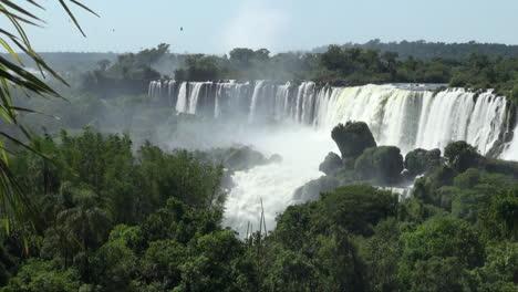 Iguazu-Falls-Argentina-palm-frond-fringes-view