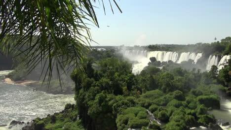 Iguazu-Fällt-Argentinien-Palmwedel-über-Sicht