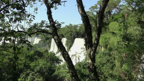 Iguazu-Falls-Argentina-view-of-palm-through-branches